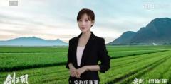 冯小刚首部监制网剧《剑王朝》热播 电影级品