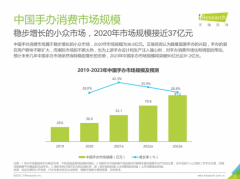 IP手办大热门,Z世代消费达到36.6亿!B站会员